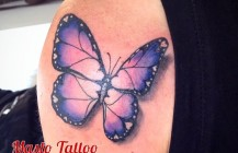 Vlinder hartjes
