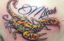 Tiger scorpio